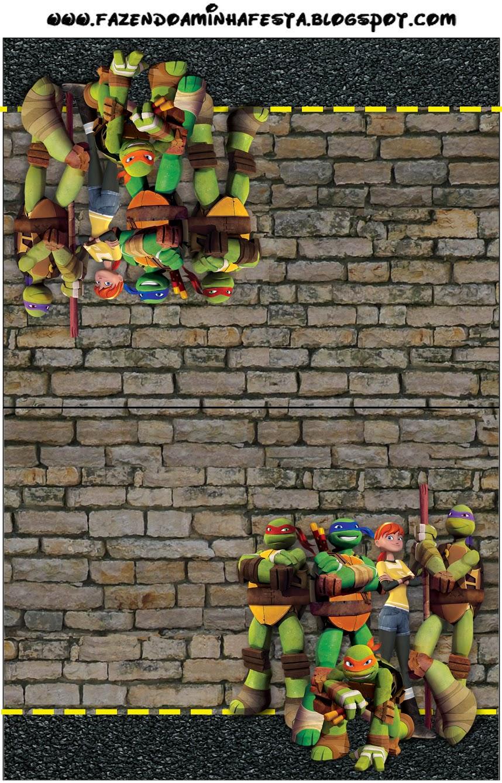 Tartarugas Ninjas Mini Kit Com Molduras Para Convites