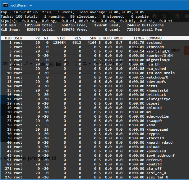 top commands usage to monitor Linux system