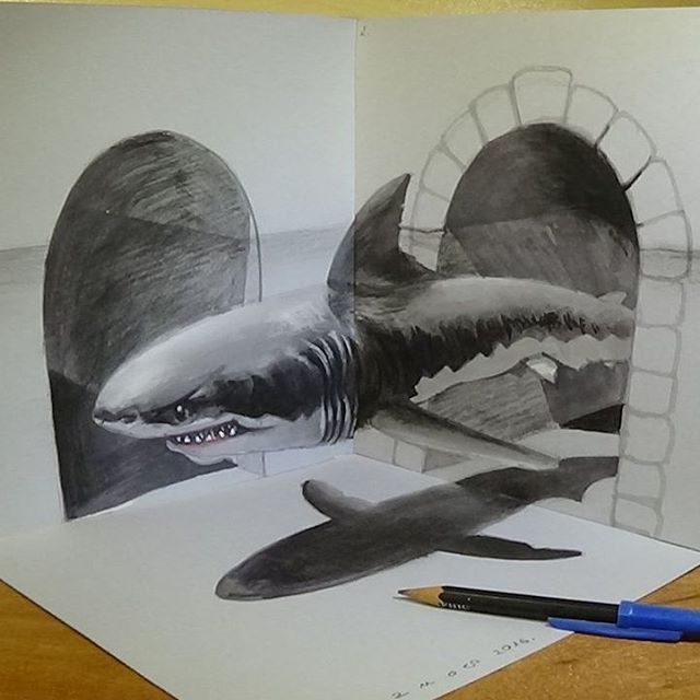 08-Great-White-Shark-Vámos-Sándor-3D-Art-and-Optical-Illusions-Drawings-and-Videos-www-designstack-co