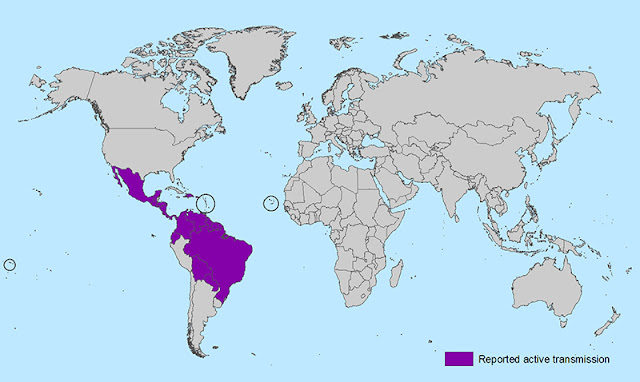 Persebaran virus zika di dunia