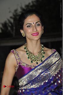 Model Shilpa Reddy Stills in Purple Silk Saree at Gudi Sambaralu 2017 Sri Ramachandra Swami Temple  0001.JPG