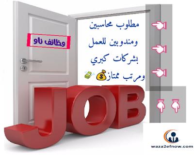 مطلوب محاسبين للعمل بكبرى الشركات الاماراتية - مطلوب محاسبين خبرة للعمل داخل الإمارات | وظائف ناو