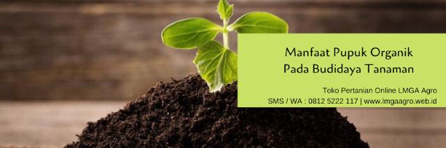 pupuk,organik,pupuk organik,budidaya,tanaman,lmga agro