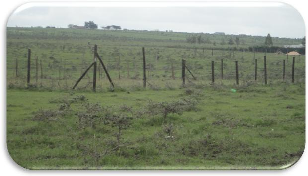 Acacia Park Plots in Olekasasi Area, Ongata Rongai Prime