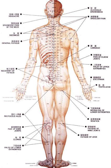 Titik Akupuntur Di Kepala Untuk Atasi Rasa Sakit