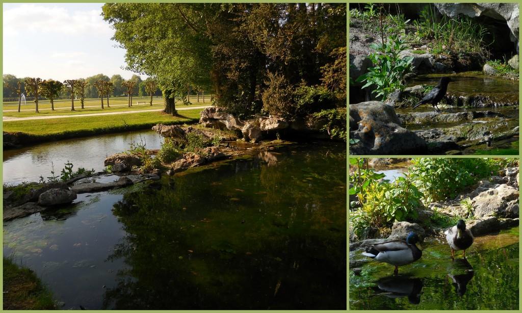 Cagouille 39 s garden un weekend g ant la f te des plantes de chantilly - Fete des plantes chantilly ...
