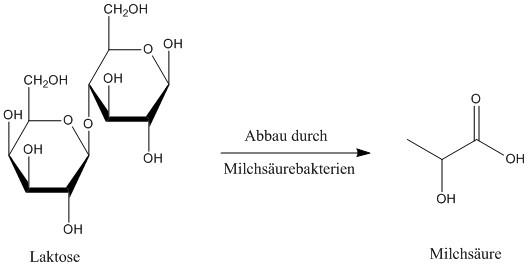 Reaktion Laktose zu Milchsäure