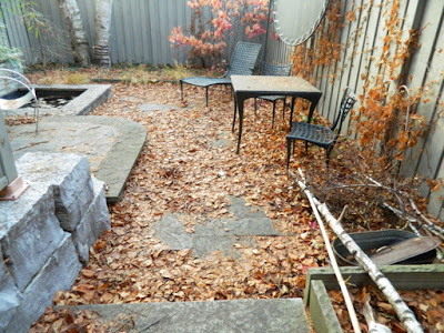 Cabbagetown Toronto  Fall Backyard Cleanup Before by Paul Jung Gardening Services--a Toronto Organic Gardening Company
