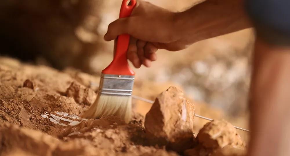 SCI-TECH : Des archéologues font une découverte vieille de 4.000 ans sous un futur centre commercial dans l'Aude