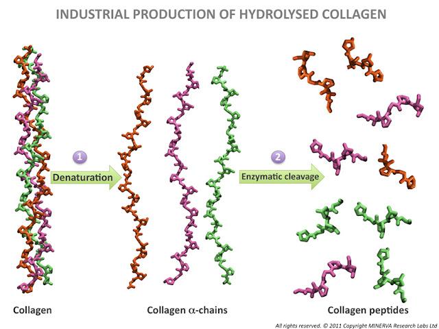 Collagen dạng nước có công dụng gì cho làn da và sức khỏe