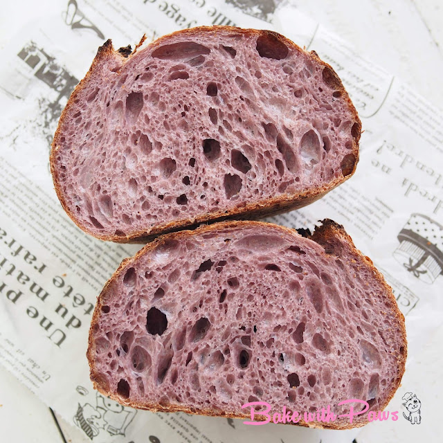 Purple Carrot Open Crumb Sourdough Bread