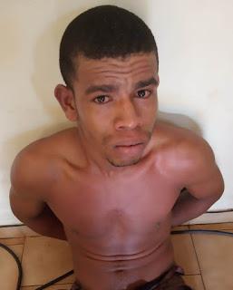 Una: Burro é detido pela polícia portando arma de fogo