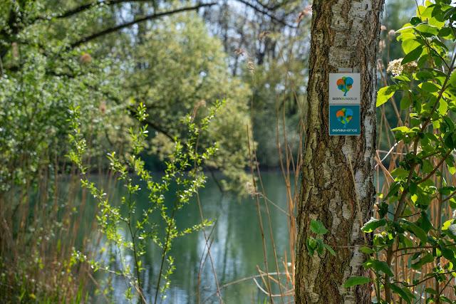 Premiumwanderweg DonAUwald | Etappe 1 von Günzburg nach Offingen 20