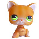 Littlest Pet Shop Singles Cat Shorthair (#11) Pet