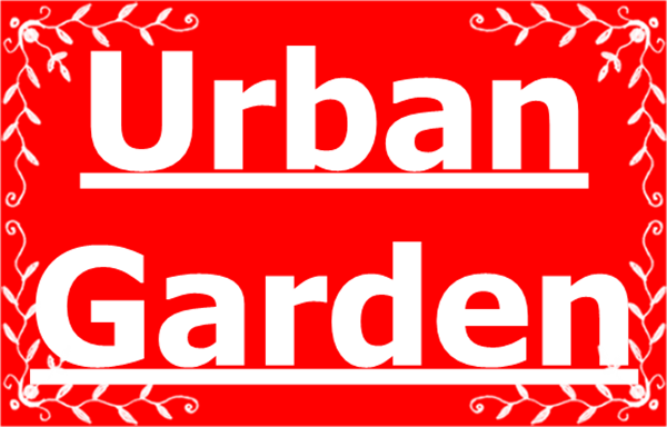 Tips to take care of plants in times of drought in an Urban Garden
