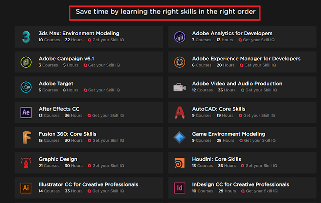 Pluralsight review for Programmers