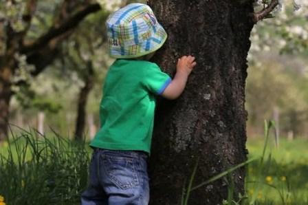 Artikel-Motivasi-Belajar-Hubungan-Anak-dan-Orang-Tua-dari-Kisah-Pohon