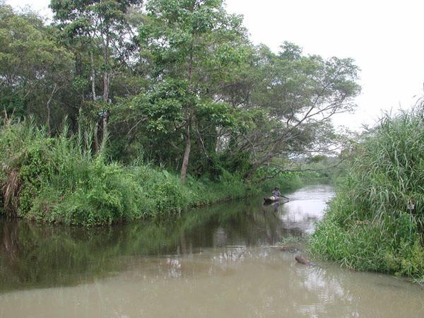 dano swamp is tourist destination in banten