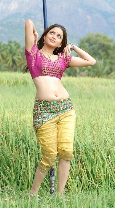 Sheena Shahabadi Spicy Hot Pictures