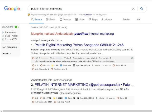 pelatih internet marketing