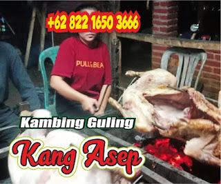 Pesan Antar Kambing Guling Pasteur Bandung, kambing guling pasteur bandung, kambing guling bandung, kambing guling pasteur, kambing guling,