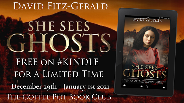 She Sees Ghosts - The Story of a Woman Who Rescues Lost Souls (Part of the Adirondack Spirit Series) By David Fitz-Gerald