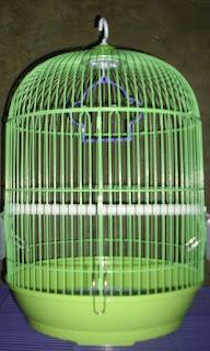 sangkar lovebird berlemak