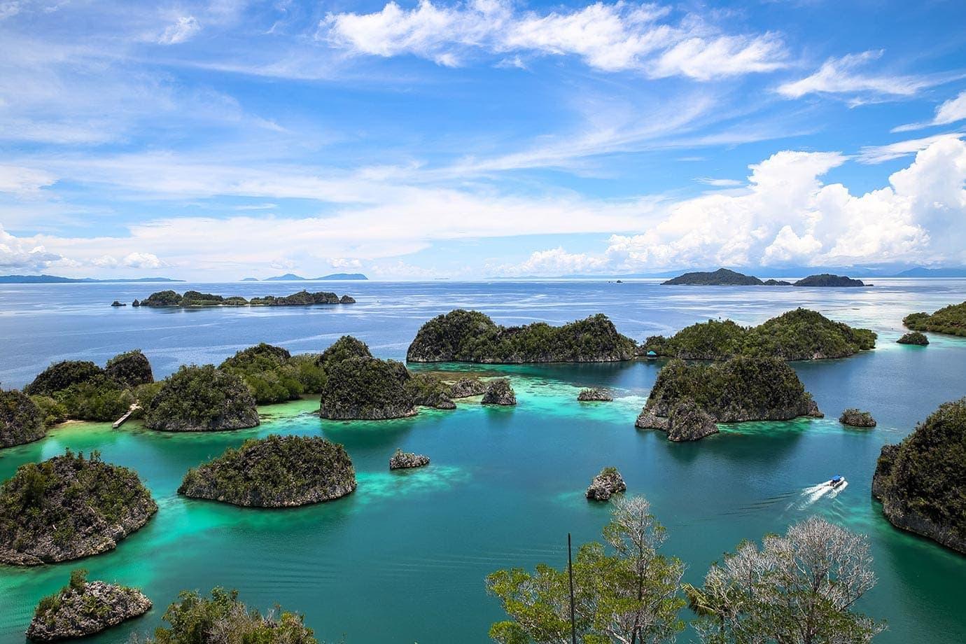 5 Tempat Wisata di Papua yang Terkenal, Pemandangan