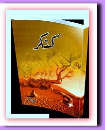 Kankar Complete Novel By Umera Ahmed Pdf