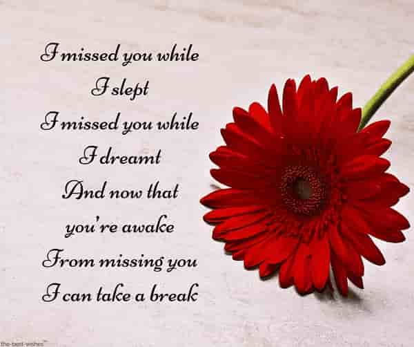 i miss you poem for boyfriend with flower