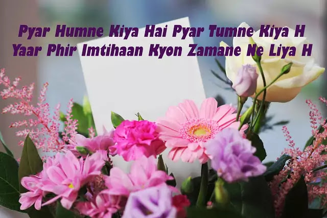 romantic sms shayari love images