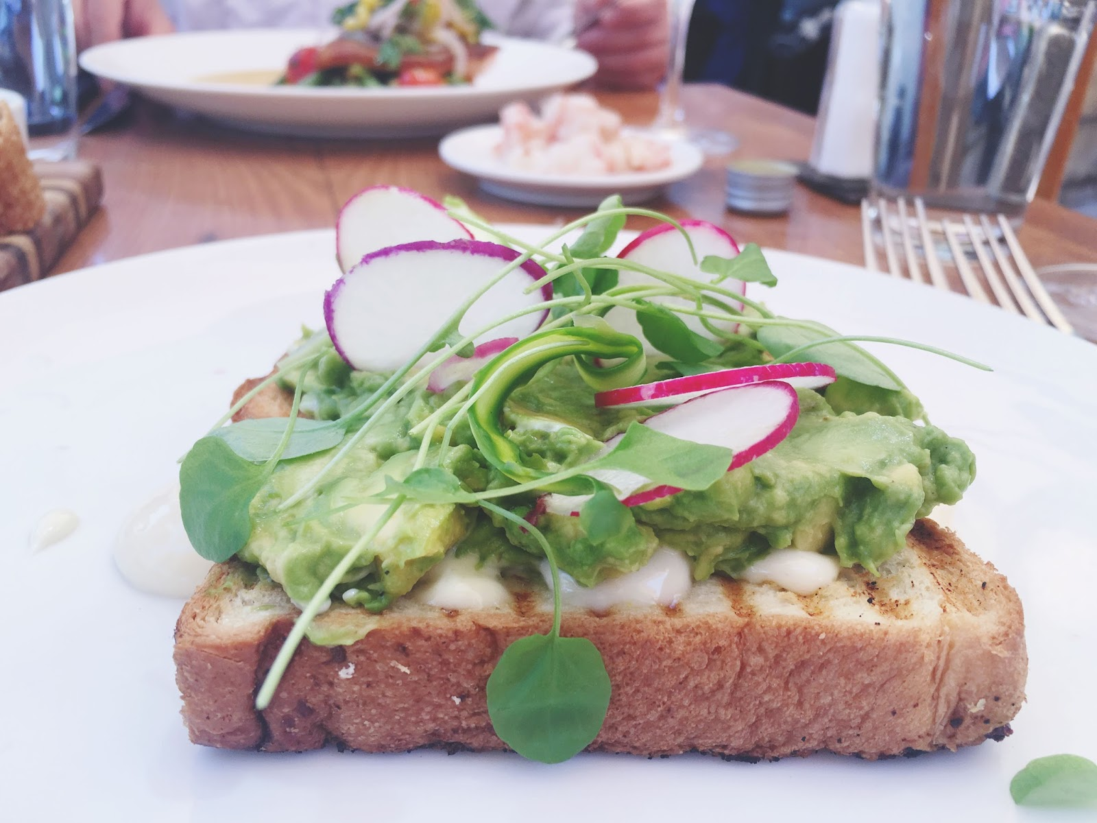 avocado toast at The Girl and the Fig - A restaurant in Sonoma, California