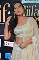Prajna Actress in backless Cream Choli and transparent saree at IIFA Utsavam Awards 2017 0006.JPG
