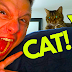 INSANE Cat Prank