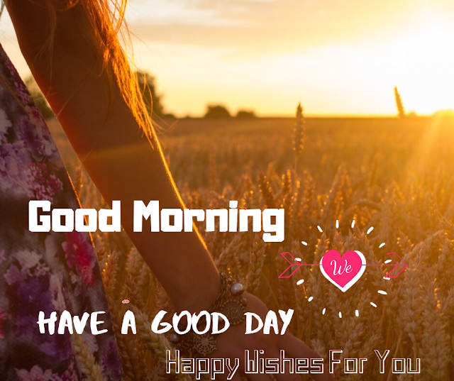 Lovely Looking Good Morning Sun Shining images