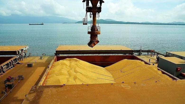 Exportações de soja somam alta de quase 74% na média diária de setembro