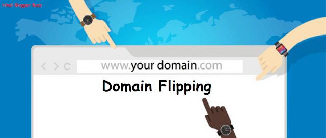 Domain Flipping Kya Hota Hai