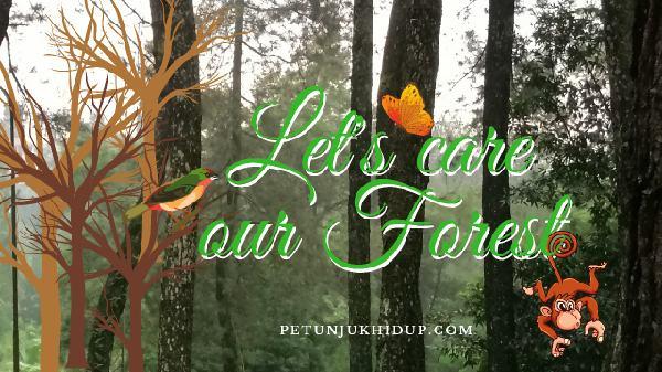 Jaga Hutan untuk Hidup Lebih Baik
