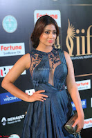 Shriya Saran in Beautiful Transparent Dark Gown IIFA Utsavam Awards 2017 007.JPG