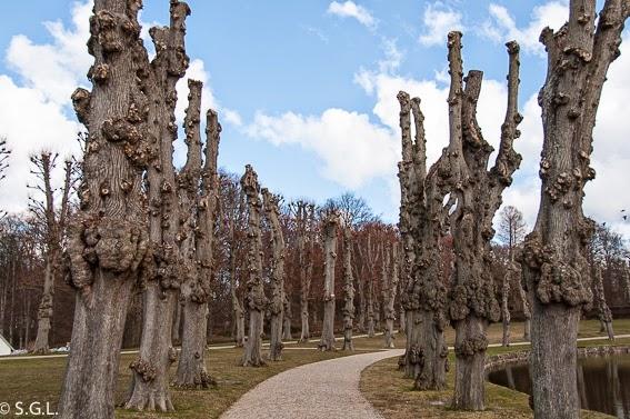 Fotografia de Jardines de Frederiksborg