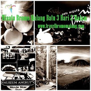 www.travelbromomalang.com