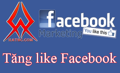 facebook maketting
