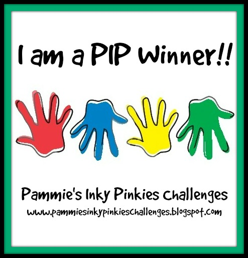 PIP challenge winner