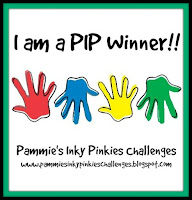 I won at PIP Challenge!