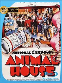 Colegio de animales (1978) BRRip [1080p] Latino [GoogleDrive] PGD
