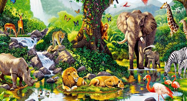 Actividades de Ciencias Naturales - 4to. grado - Los seres vivos
