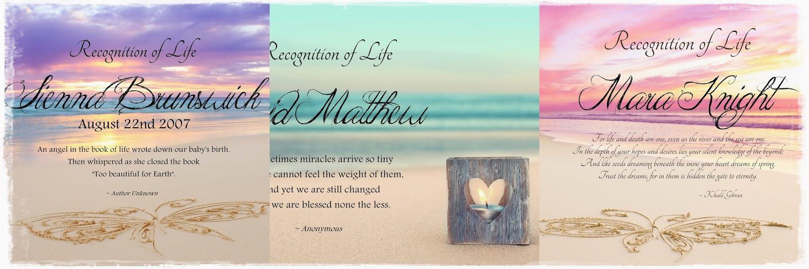 http://theseashoreofremembrance.blogspot.com.au/2013/02/recognition-of-life-images.html