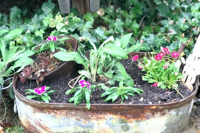 Repurposed Planter Ideas for the Garden