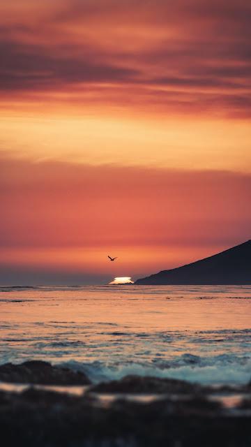 Sea, Sunset, Waves, Mountain, Bird, Beach