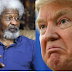 I will destroy my green card and start packing if Trump wins - Wole Soyinka